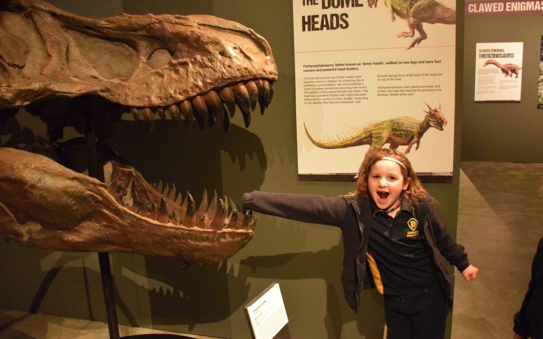 Term 3 Week 3 – 1/2 B (Evans) and 1/2 C (Eyles) Dinosaur work
