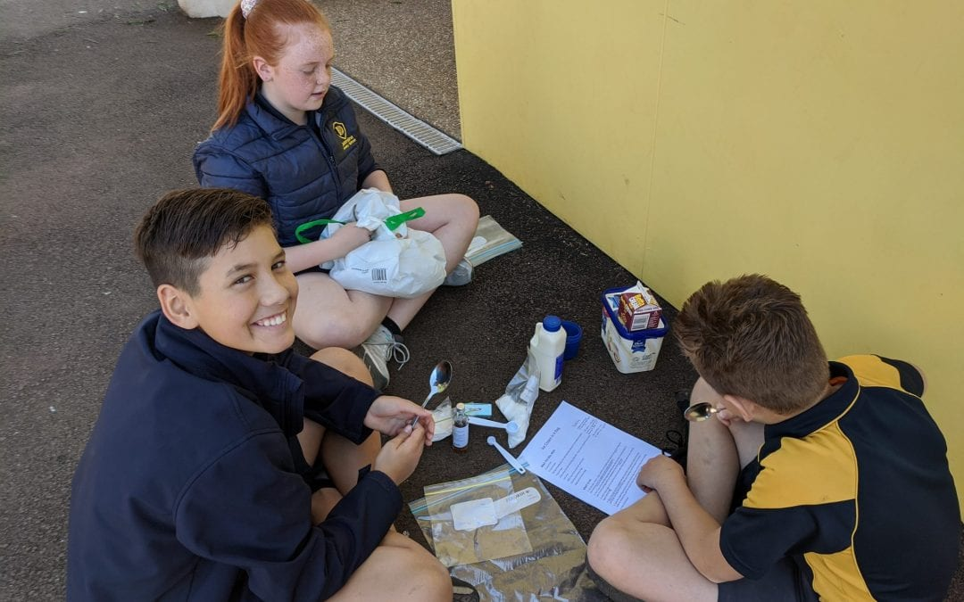 Term 4 Week 9 – 5/6 Science Investigations